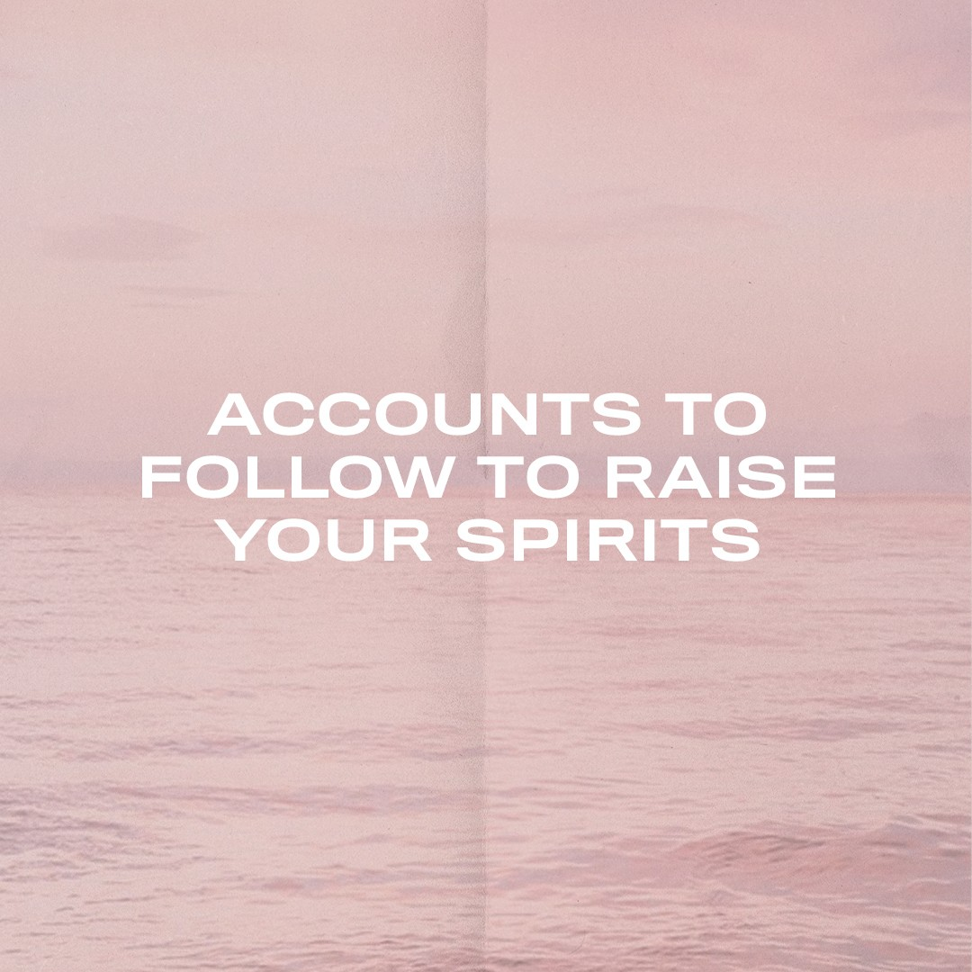 Pink background with message Accounts to Follow