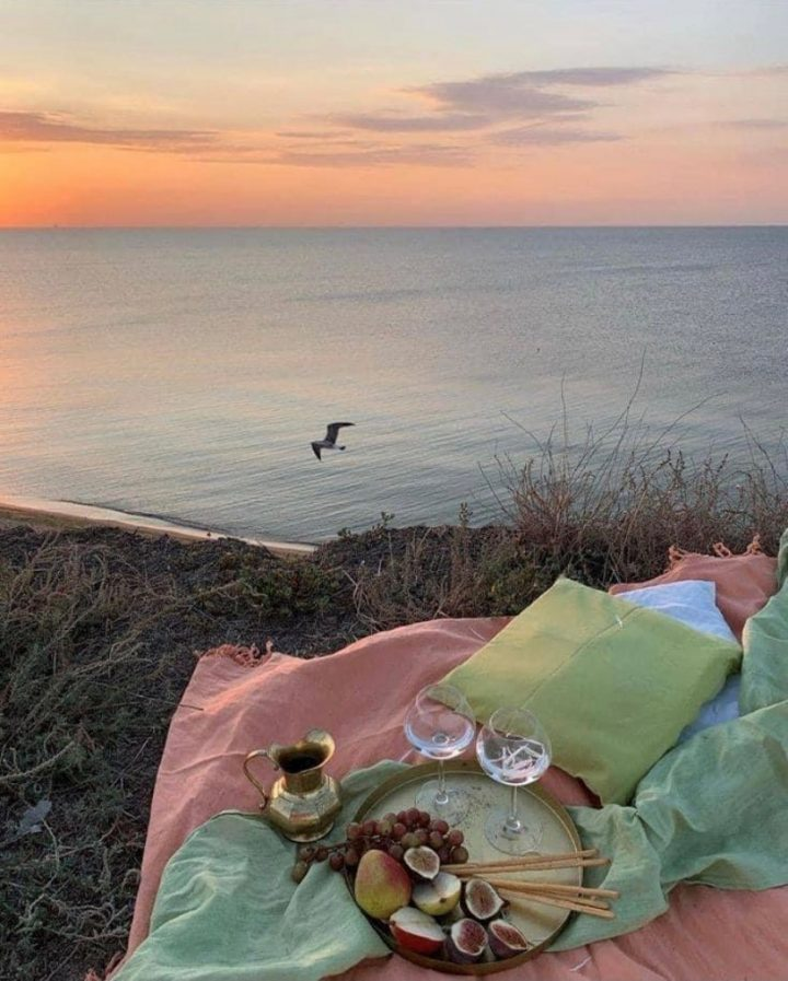 picnic golden hour orange sky bird grass sea pink picnic blanket fruit cheese missguided